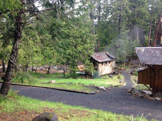 Breitenbush Hot Springs: Sauna