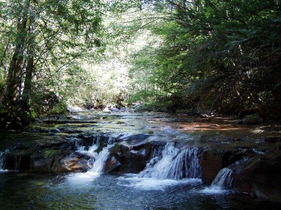 Breitenbush Hot Springs: Hiking