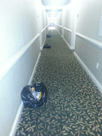Suburban Extended Stay Pensacola-NAS: Upon arrival we are going to our room-trash lined the halls. A little before 3pm. Thursday May 8