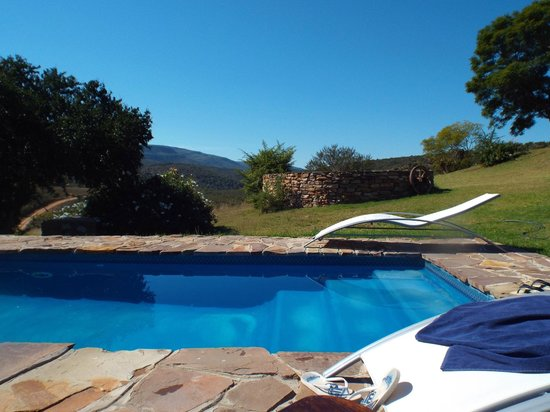 Addo Bush Palace Private Reserve: another pool view
