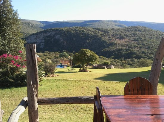Addo Bush Palace Private Reserve: View that greats you in the morning - great