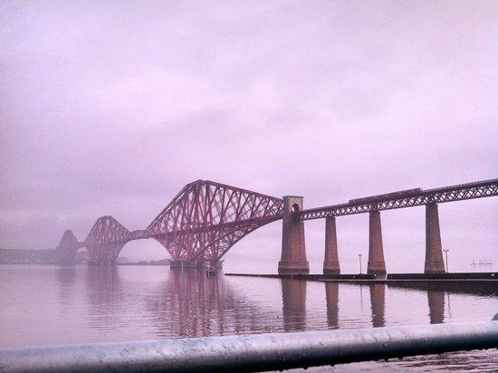 The Hairy Coo - Free Scottish Highlands Tour : Reserve um dia de viagem e faça esse tour!
