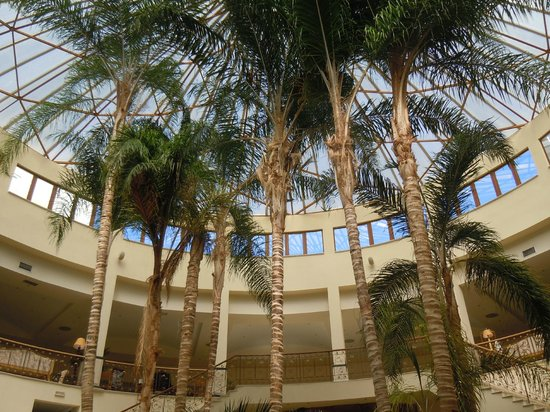 Atlantica Imperial Resort & Spa: Large palm trees within hotel