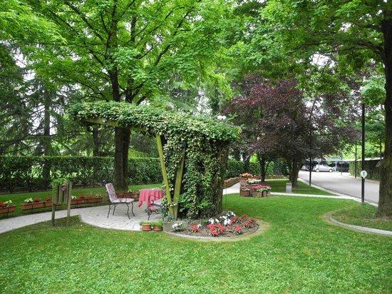 Hotel Terme Orvieto: Verde di fronte all'ingresso