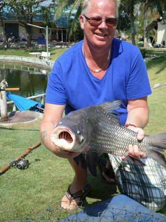Hua Hin Fishing Lodge: siamese carp