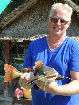 Hua Hin Fishing Lodge: redtail catfish