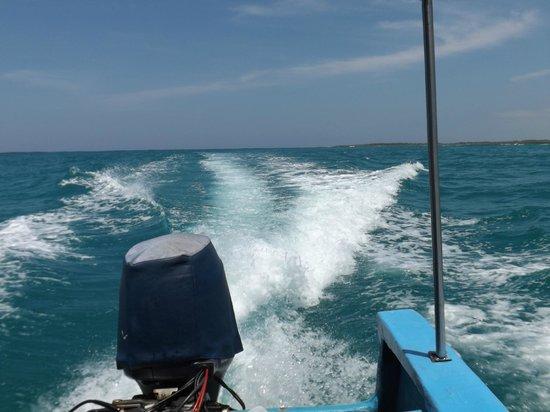 Galapagos Beach at Tortuga Bay: Vuelta en lancha