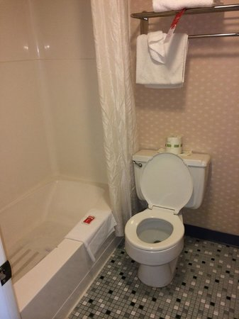 Econo Lodge: Bathroom
