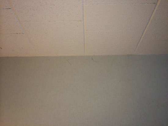 Econo Lodge: Dusty Cobwebs hanging from the ceiling