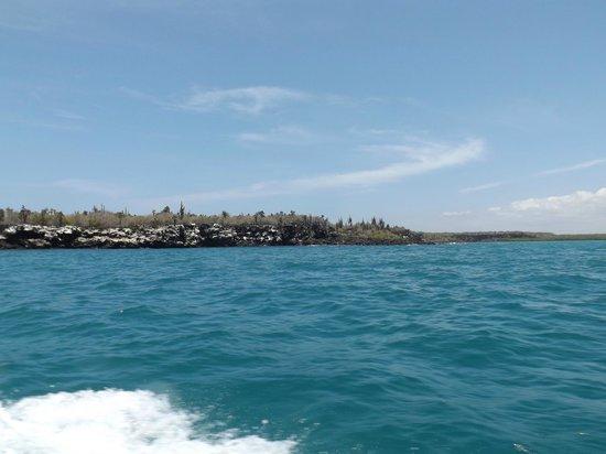 Galapagos Beach at Tortuga Bay: Desde la lancha