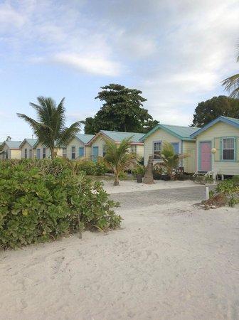 Royal Caribbean Resort : RCR