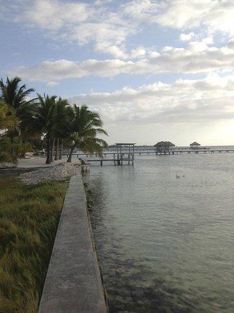 Royal Caribbean Resort: RCR
