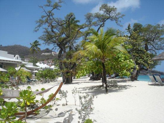 Spice Island Beach Resort: Vue de la chambre