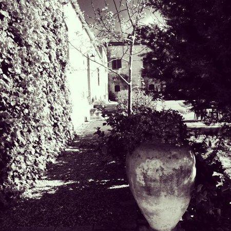 Masseria Susafa: garden