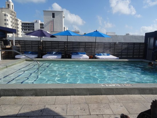 Catalina Hotel & Beach Club: The rooftop pool at Dorse building!