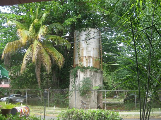 La Cambija: Remnant of the sugar cane industry?