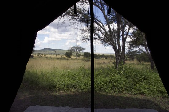 Dunia Camp, Asilia Africa: View out of our tent.
