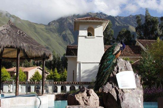 Aranwa Sacred Valley Hotel & Wellness: Ai  que lindo!