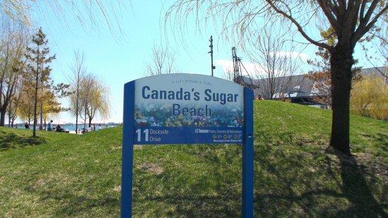 Sign Picture Of Canada S Sugar Beach Toronto Tripadvisor