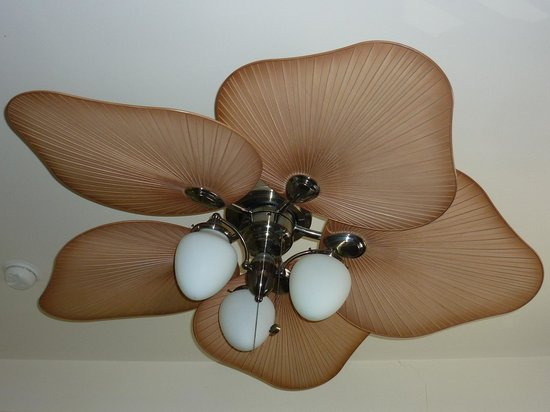 Adelaide Hostel: The ceiling fan in our lovely room
