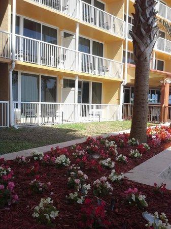 Holiday Inn Resort Daytona Beach Oceanfront : well kept property