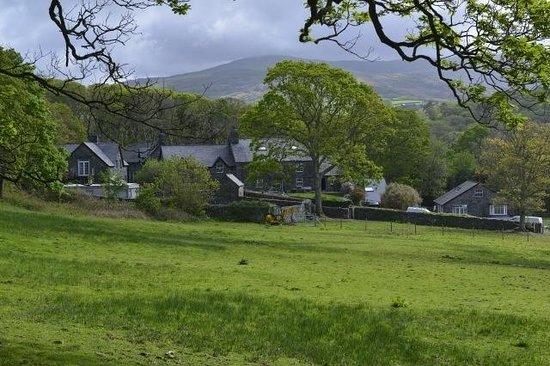 Gwynfryn Farm Cottages and B&B: Gwynfryn view from field