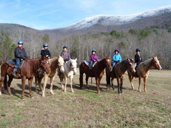 Trackrock Stables: Riding in winter