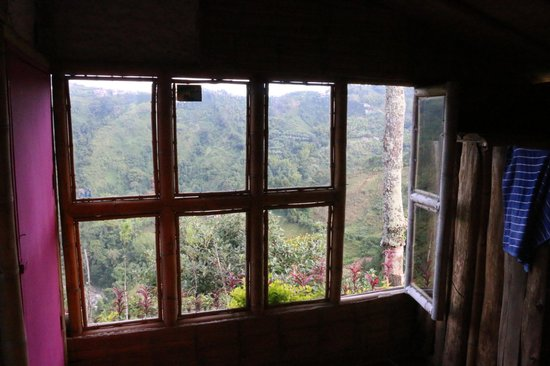 The Secret Garden Manizales: view from our room