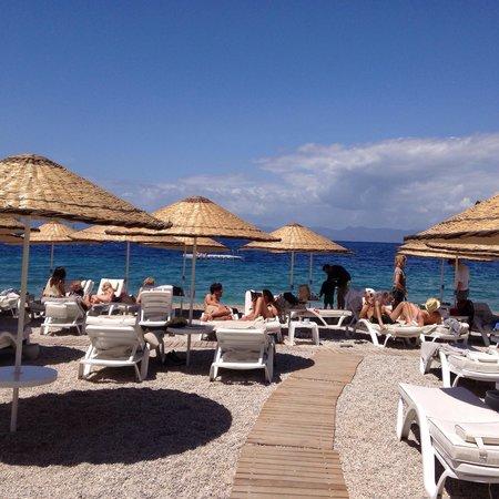Hillside Beach Club: Beach
