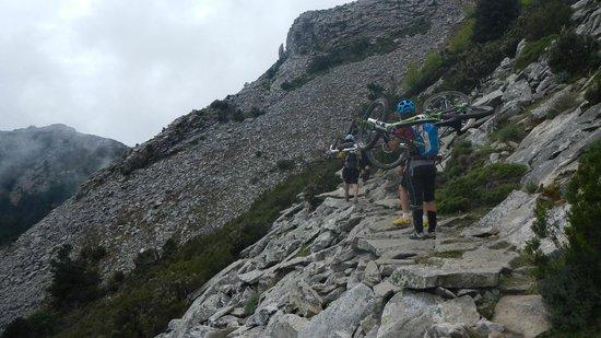 Residence il Mandorlo: monte Capanne