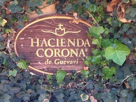 Hacienda Corona de Guevavi: landscape design