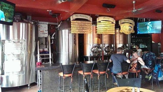 Los Muertos Brewing: Brewing tanks