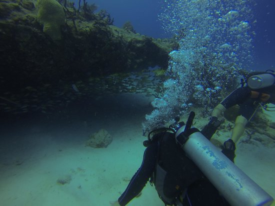The Scuba Tribe: his dive