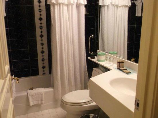 Fitzpatrick Grand Central Hotel: small bathroom