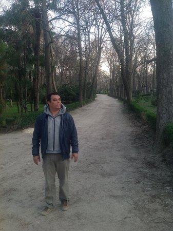 Retiro Park (Parque del Retiro): passeio