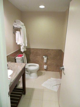 Holiday Inn L.I. City - Manhattan View: Banheiro limpo e em bom estado.