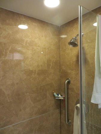Holiday Inn L.I. City - Manhattan View: Chuveiro em bom estado. Água quente e vazão razoável.