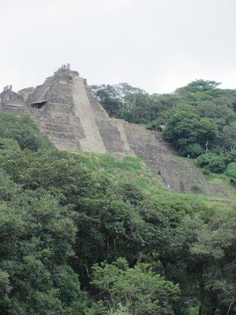 Tonina : Toniná ruins peeking out of the jungle