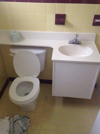 The Diplomat Motel: Bathroom