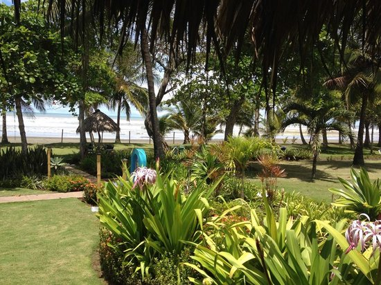 Alma del Pacifico Beach Hotel & Spa : Hermosa vista de los jardines del hotel