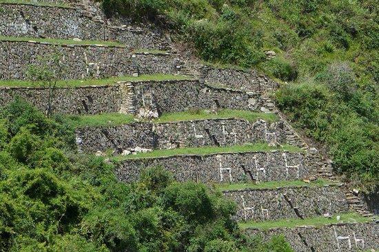 Choquequirao: Los andenes de las llamas