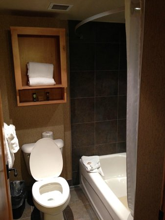 Fox Hotel & Suites: Toilet (sink is outside in hallway)