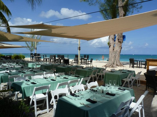 Comfort Suites Seven Mile Beach : Beach behind the Westin Hotel - $21CI great sunday brunch