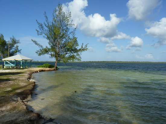 Comfort Suites Seven Mile Beach : Water Cay Beach- a quiet local spot - far island end.