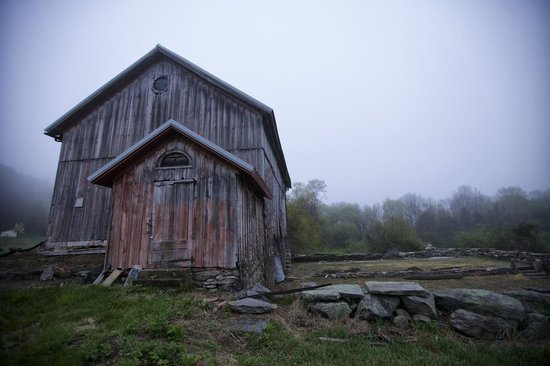 Fitch Claremont Vineyard Bed and Breakfast: View of a barn on the B&B premises during a foggy morning.