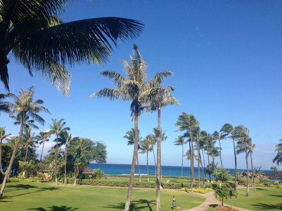 Sheraton Maui Resort & Spa : View from Deluxe Ocean View Room (2nd floor)