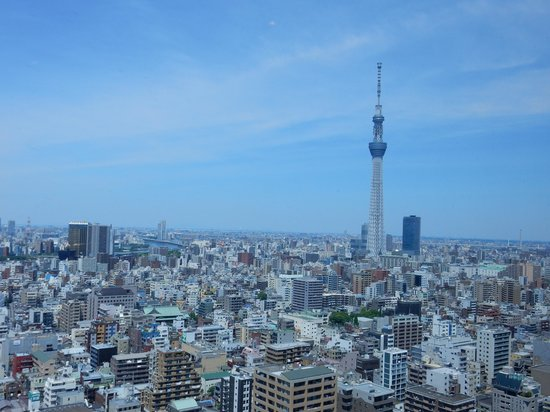 Dai-ichi Hotel Ryogoku: レストランからの眺望