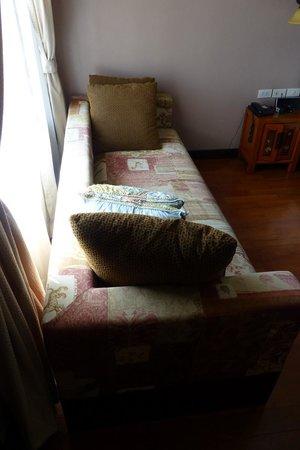 Sala Arun: Room sofa