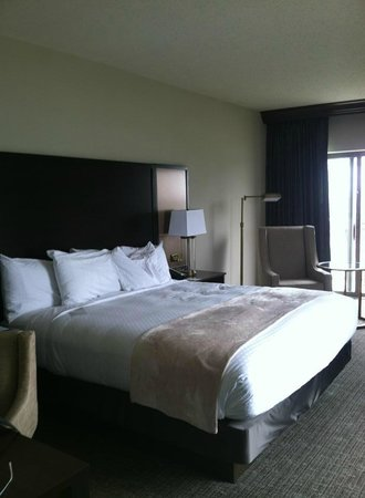 DoubleTree by Hilton Hotel Port Huron: That bed helped me sleep for 12 hours...that is unheard of!