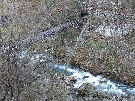 Tsuribashinoyado Sansuikan Yugawaso : 部屋からつり橋を眺む